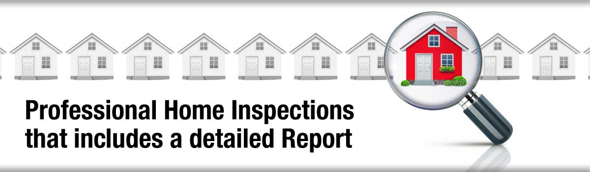 Owen Sound Professional Home Inspections that include a detailed Report